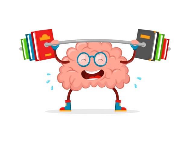 brain lifting stock