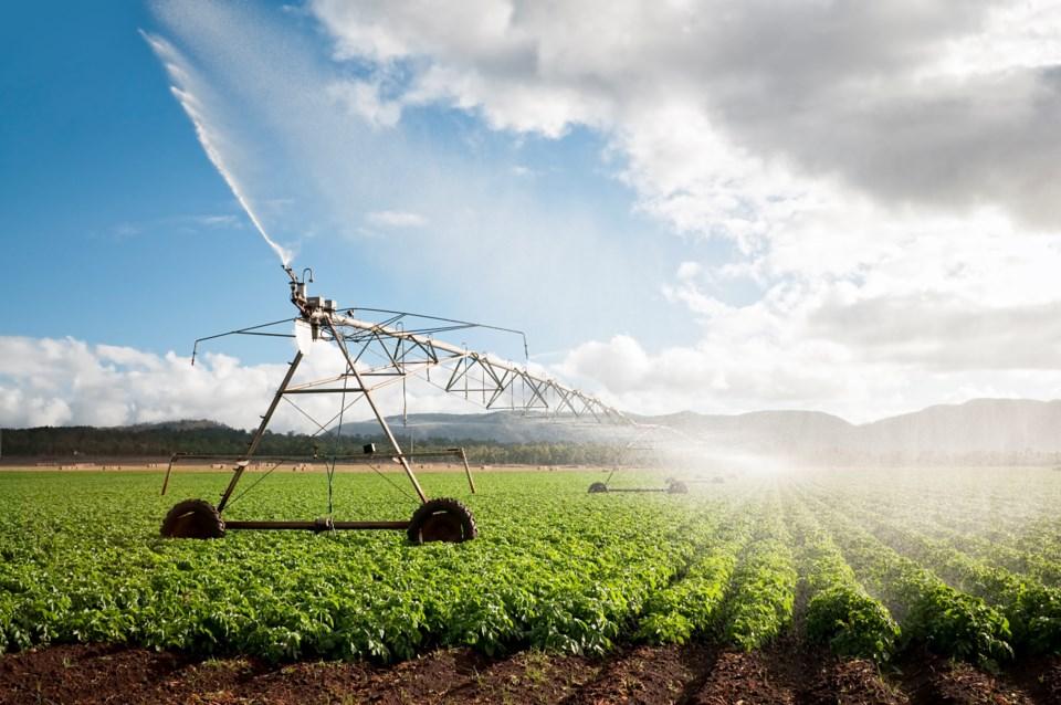 irrigation-stock