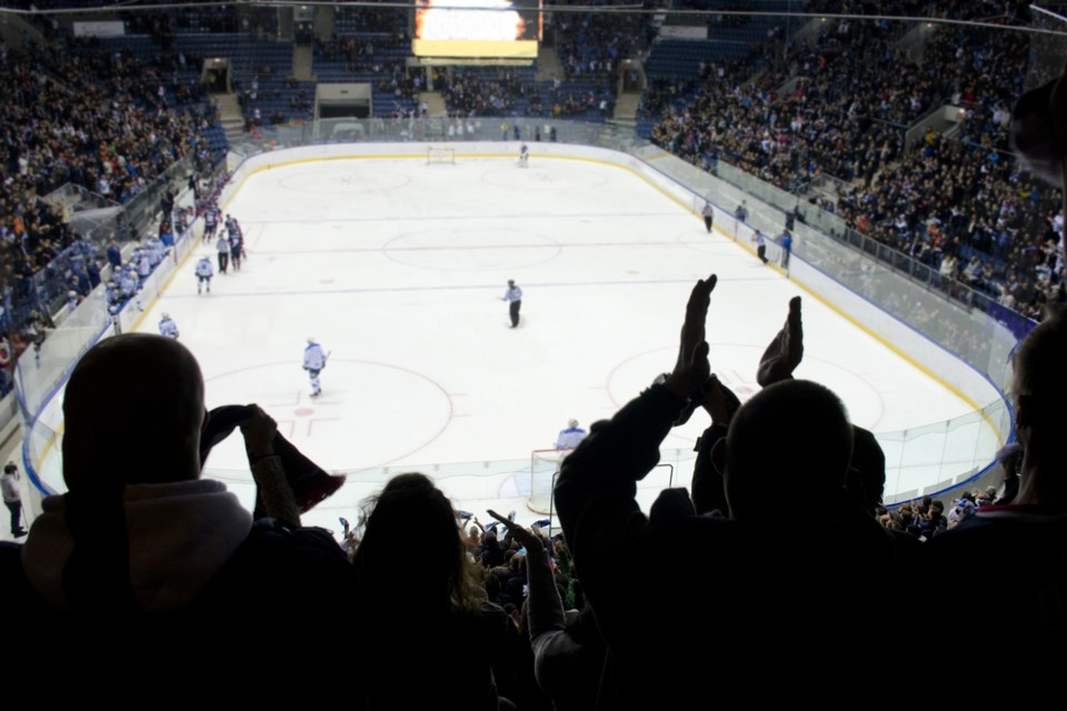 hockey crowd in arena shutterstock