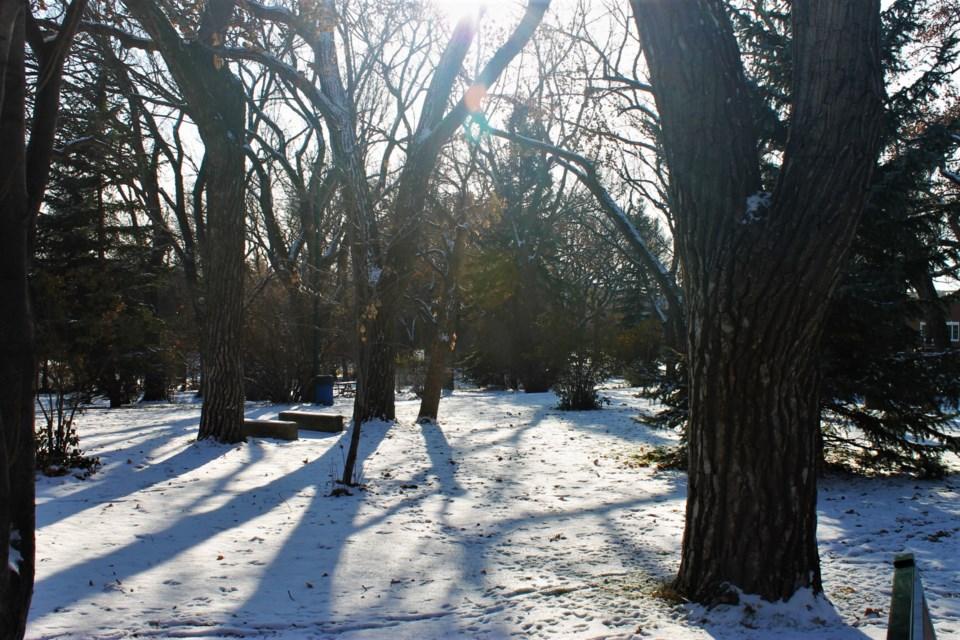crescent park winter