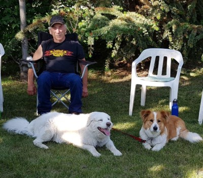 Dan and Dogs - Summer 2019