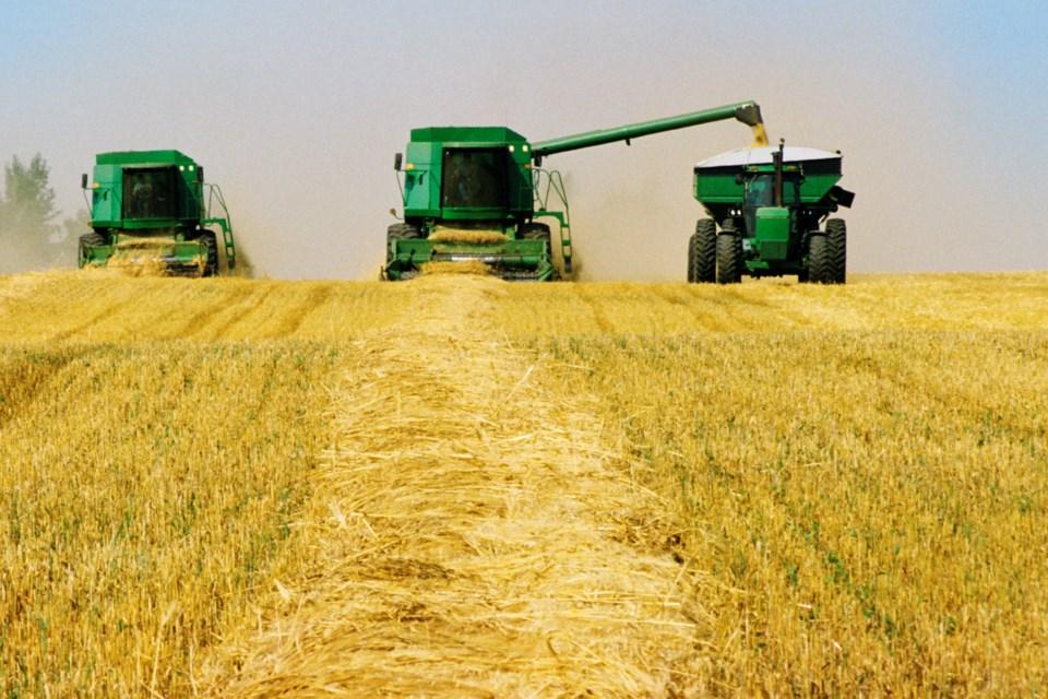 MVG stock harvest