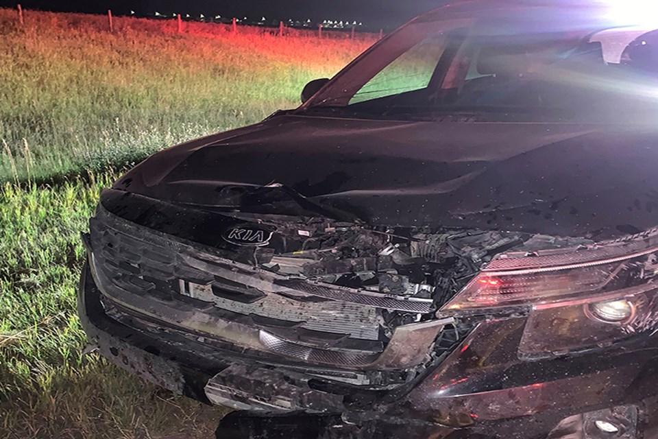 MVP Penhold area moose vehicle collision