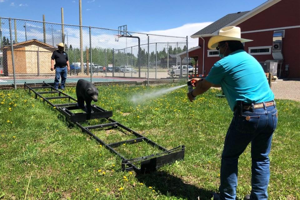 MVT bear spray lesson