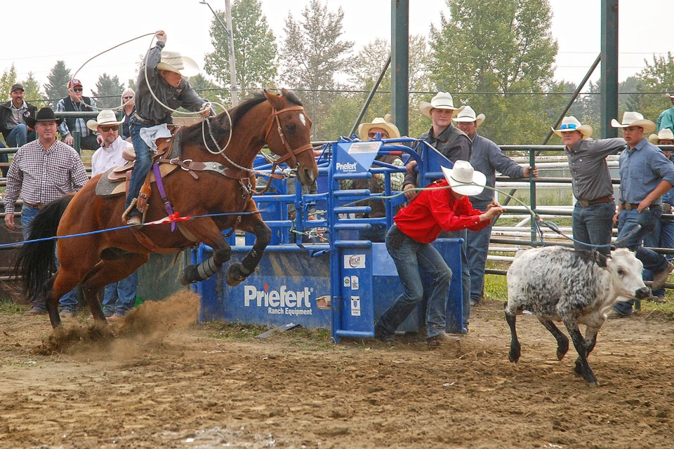 Sundre's own Cole Evans comes leaping out on his steed Friday afternoon during the junior breakaway boys event of a high school rodeo hosted at the Sundre Rodeo Grounds by the Mountain View High School Rodeo Club. A 10 second penalty coming out of the gate landed him a total time of 17 seconds. Simon Ducatel/MVP Staff