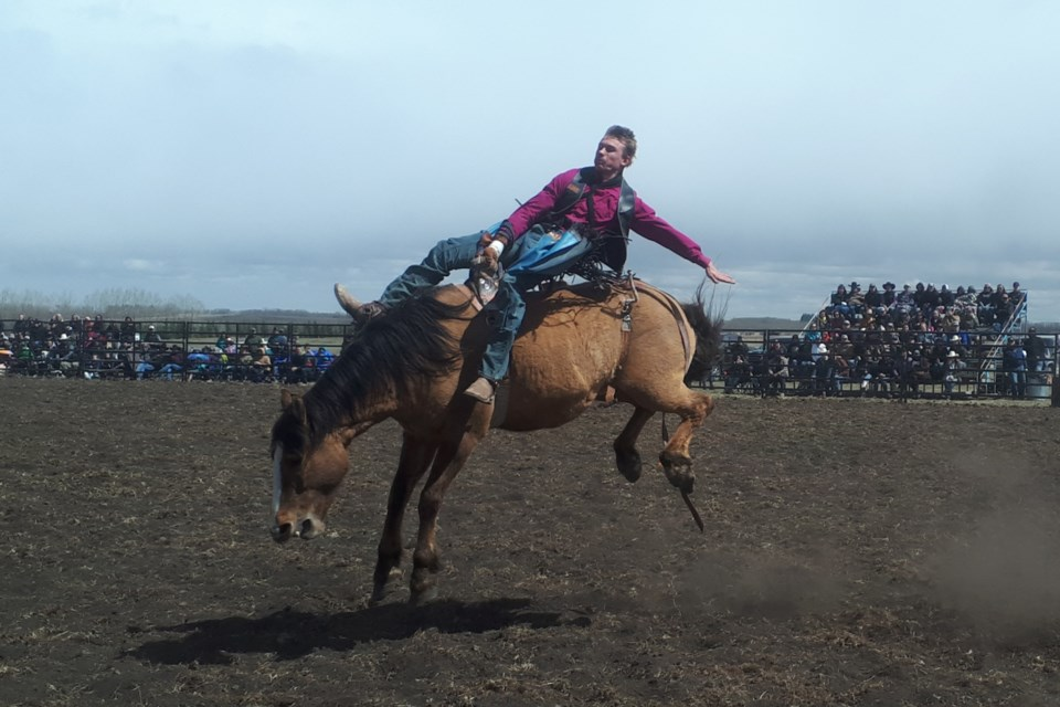 A cowboy competes in the bareback section of the No More Lockdowns Rodeo Rally May 1, south of Bowden. Doug Collie/MVP Staff