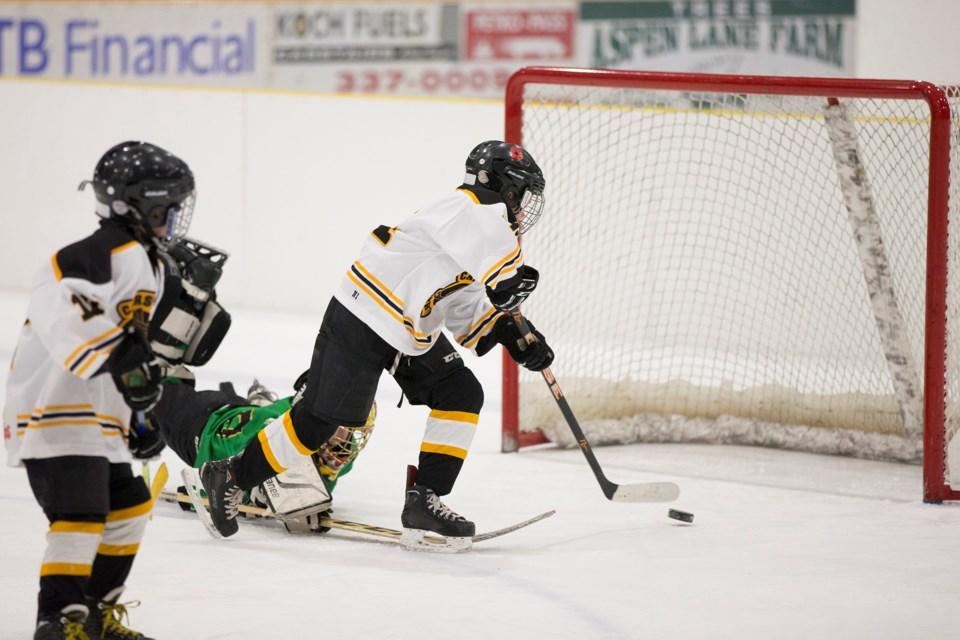 MVT stock Carstairs Minor Hockey