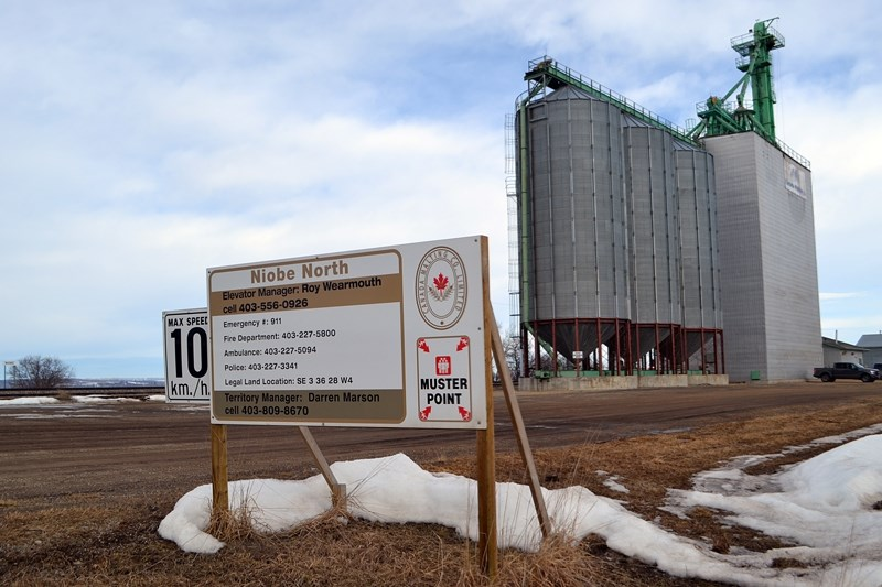 The new massive grain terminal at Niobe that was approved by Red Deer County last week will be built across the rail track to the west of the existing north elevator.