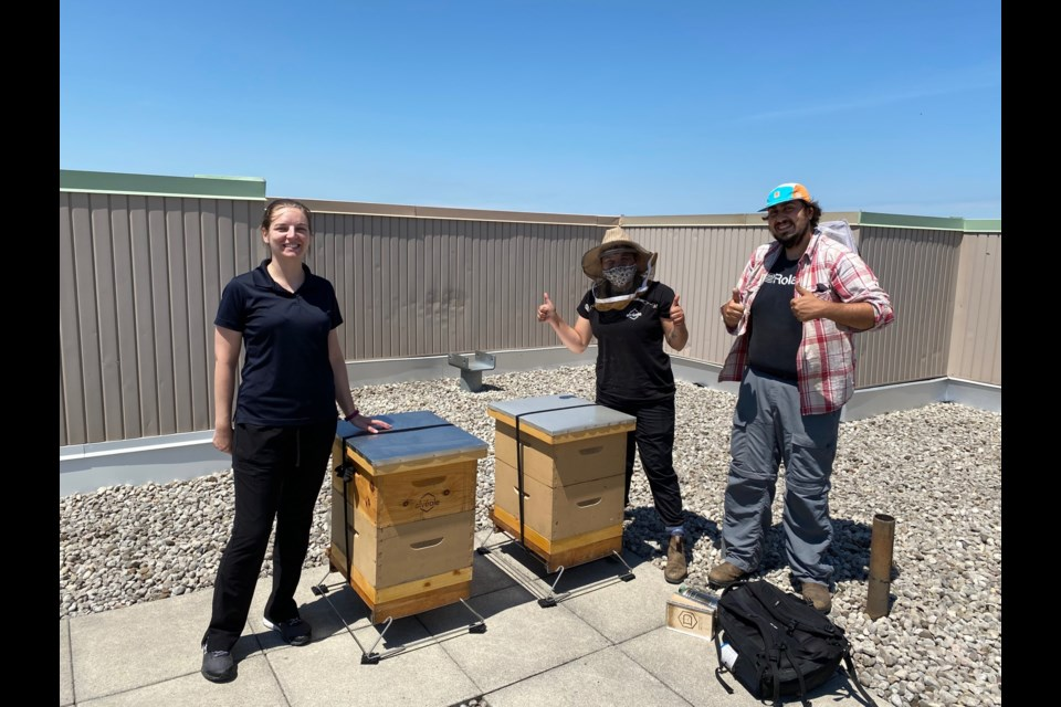 Beehives were placed on the rooftop at Amica Newmarket.