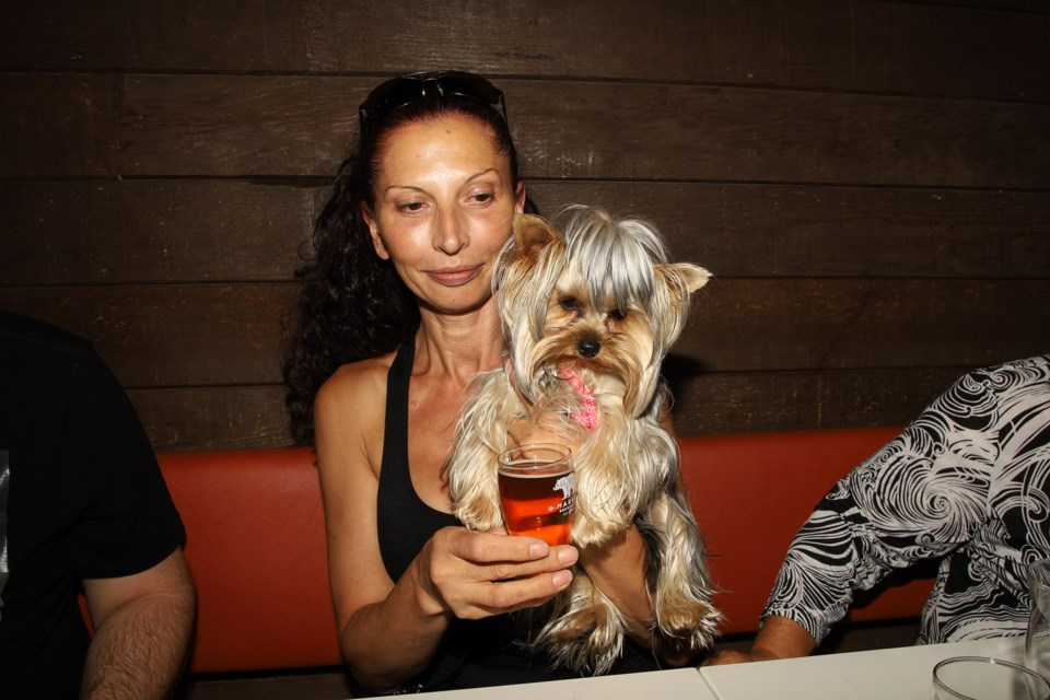 Oksana Dziouba and Sophie attended Pints for Pets at Newmarket's Market Brewing Co. yesterday.  Greg King for NewmarketToday
