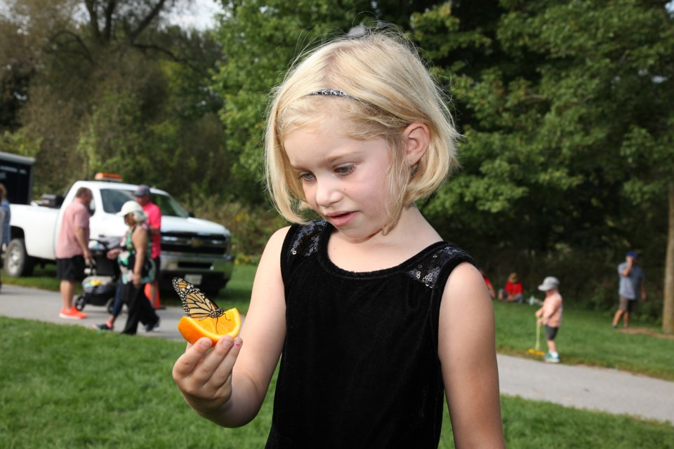 Emma with a butterfly.  Photography by Greg King