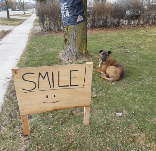 Lisa Heckbert spotted this sign, guarded by Duke, that's a reminder that a smile can make a  difference on Gorham Street near the fire hall.