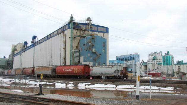 Grain elevator 2