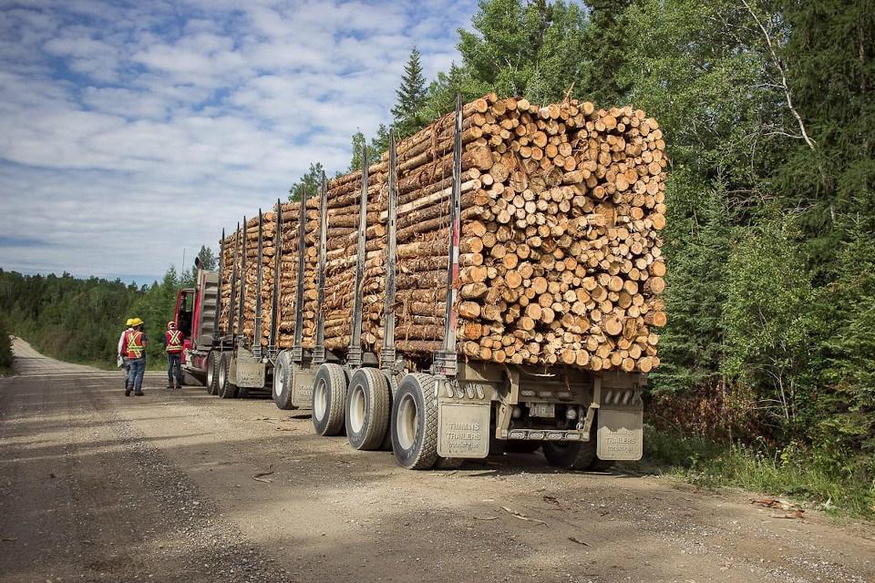 (Nawiinginokiima Forest Management Corporation photo)