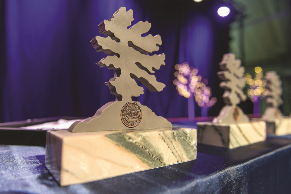 The 2020 Northern Ontario Business Awards celebrate nine outstanding people and organizations from across the North.