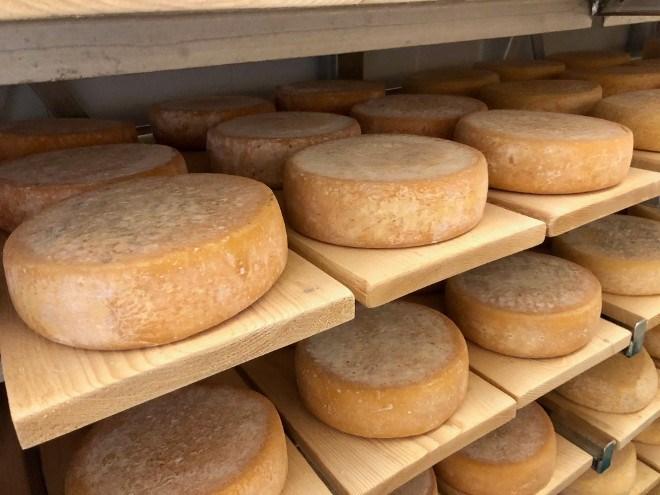 fromagerie_kapuskoise_cheese
