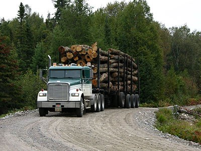 Truck-with-logs-on-forest-road_Cropped