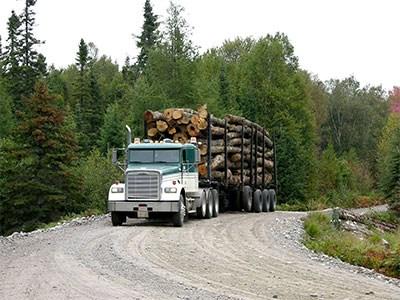 Logging-truck-(MTO-photo)_Cropped