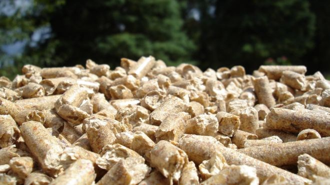 biomass_cropped