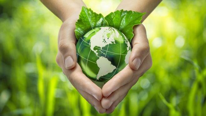 green_business_web