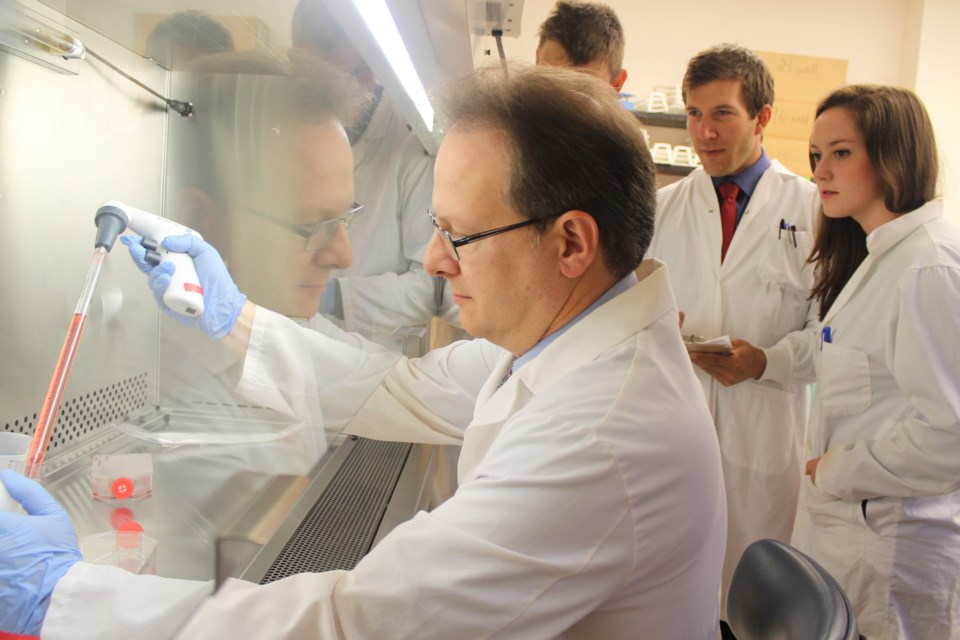 Dr. Amadeo Parissenti works in his lab at the Health Sciences North Research Institute in Sudbury.