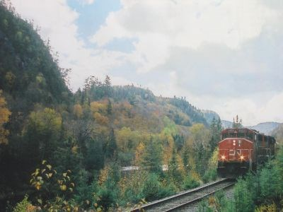 CN_train_cropped
