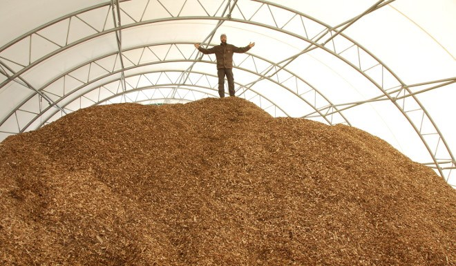 Biothermic Wood Energy Systems president Vince Rutter shows off a shed full of wood chips at his processing site in Thunder Bay.