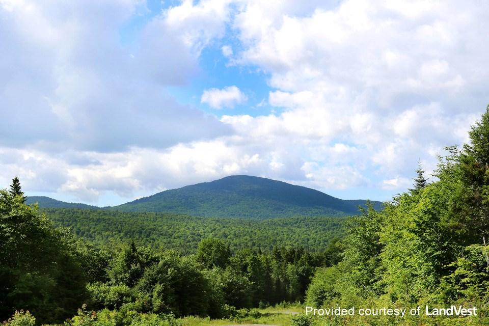 Wolfden Resources Pickett Mountain (Maine)