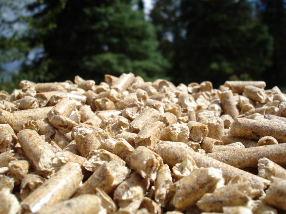 Wood pellets - generic