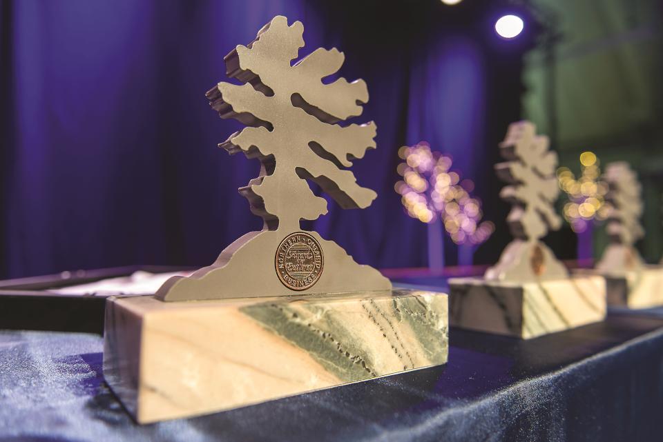 noba_award