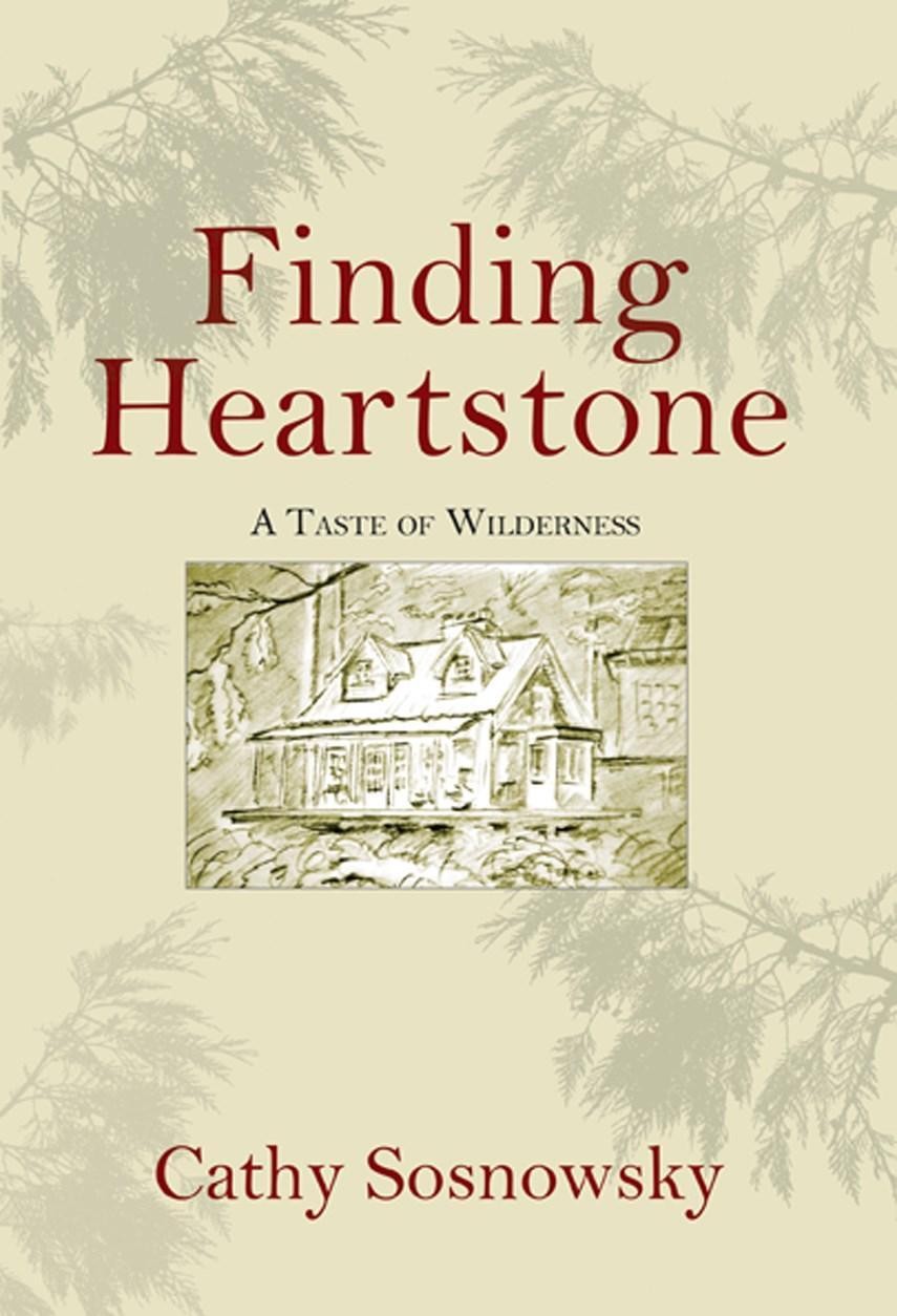 book Finding Heartstone - web