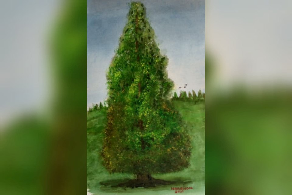 Second World War veteran Ernie Harrison painted the cedar tree on the corner of 21st Street and Eastern Avenue in Central Lonsdale for a friend to use to help raise awareness about saving the tree from destruction.