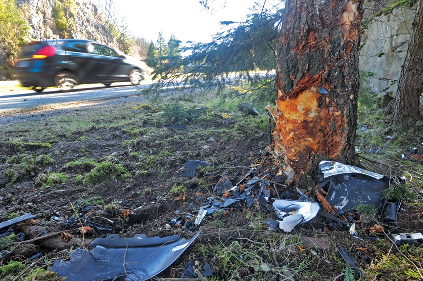 A damaged tree and debris from a vehicle remain at the scene of a fatal crash involving a lone driver in West Vancouver, Saturday night.