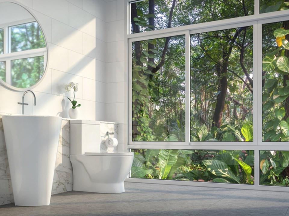 Fancy toilet GettyImages