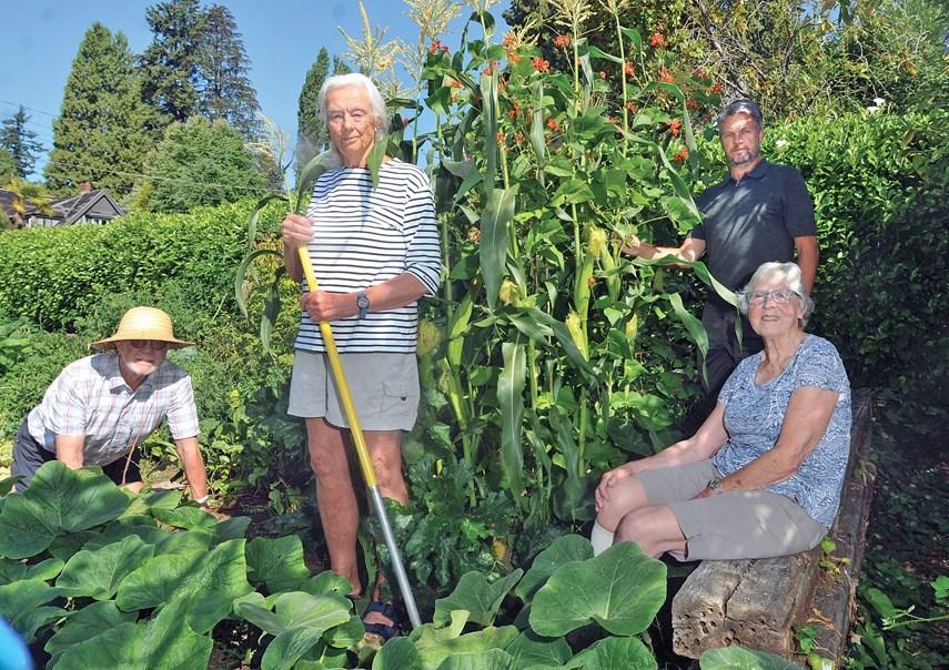 WV Community GardenWEB