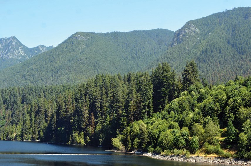 Capilano Lake on July 5. The region's reservoirs are so far steady at normal levels.
