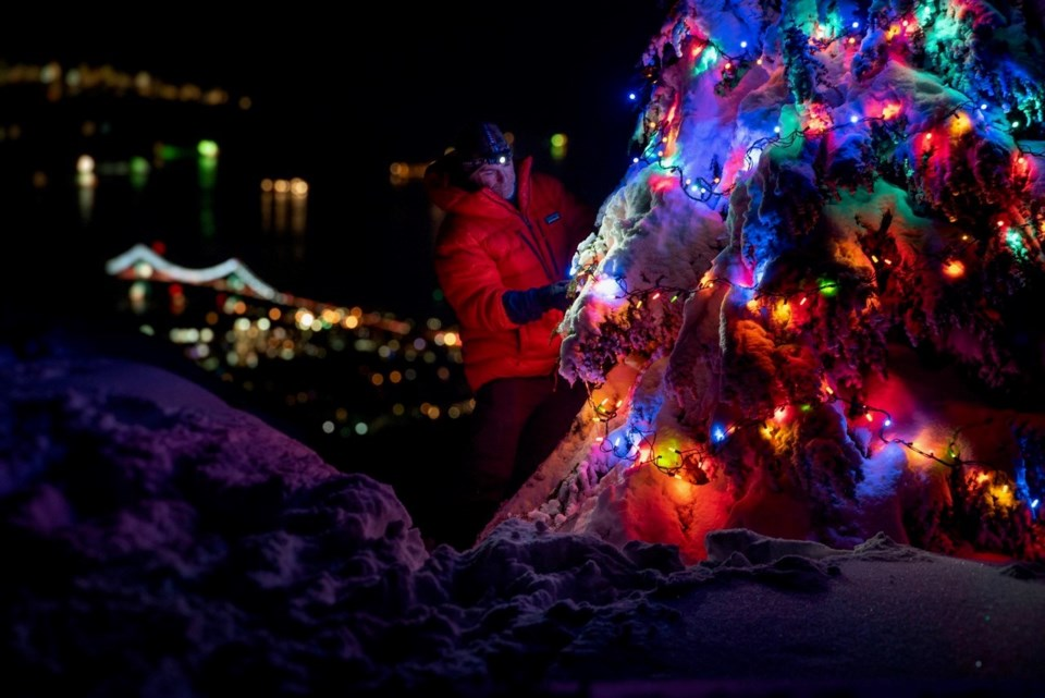 Christmas tree Mount Seymour