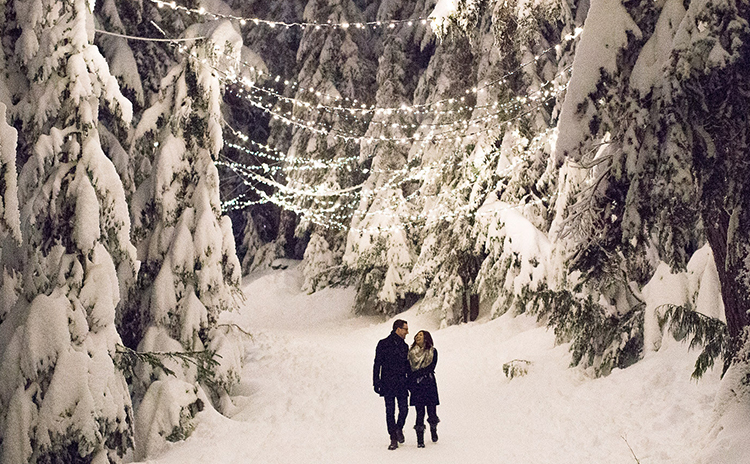 Book a mountain admission ticket and head up to Grouse Mountain to enjoy the sparkling snowy walk.