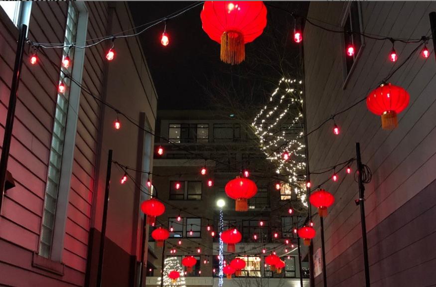 Living Lane lit up for Lunar New Year