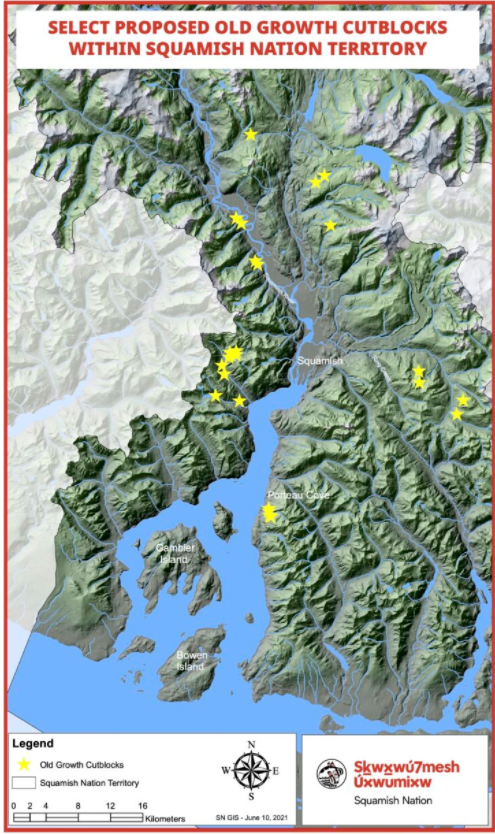 Squamish Nation old growth cut blocks