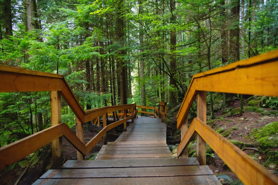 Lynn Canyon Boardwalk trail