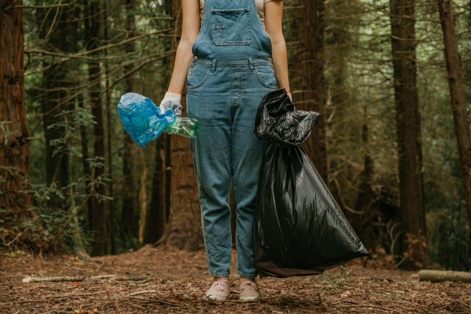 Forest cleanup