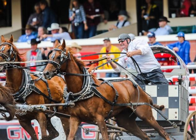 Third Horse Dies At Calgary Stampede Chuckwagon Races