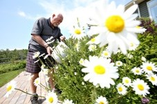 Turner Valley resident John Waring uses left over water from his shower to water the flowers in his yard. The Town implemented penalties in its water conservation bylaw to