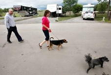 A woman walks her dog while camping in the Bob Lochhead Memorial Park in Black Diamond last week. A committee was formed to come up with a design for the northern part of the