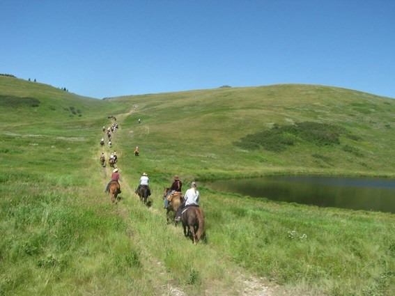 The Bar U Ranch Trail Ride, as seen here in 2012, is a great opportunity learn about the history of grazing lands, the types of grasses in the area south of Longview, and