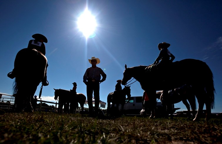 Contestants gather in a horse-judging competition at last year' s Priddis & Millarville Fair. This year' s old-fashioned competitions and festivities take