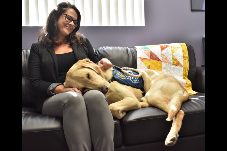 """Child and family advocate Tanya Devlin sits beside Moose, a facility dog that """"works"""" alongside staff at the Child Advocacy Centre of Simcoe Muskoka at both their Orillia and Barrie offices. Moose has been a """"game changer"""" for the centre and the families it supports. Dave Dawson/OrilliaMatters"""