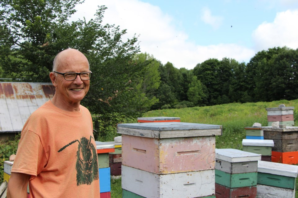 Beekeeping offers plenty of outdoor adventures for Tom Morrissey, the beekeeper –  from daily colony checks to netting a swarm to catching escaped bees. Kathy Hunt/OrilliaMatters
