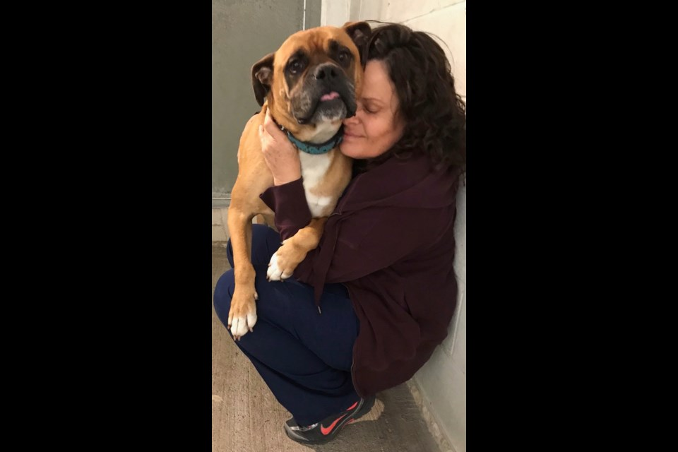Orillia SPCA Animal Care Attendant Denise Jarvis spends quality time with Charlie during the pandemic.  Contributed photo